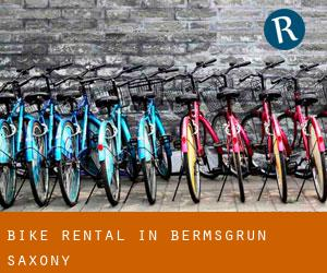 Bike Rental in Bermsgrün (Saxony)