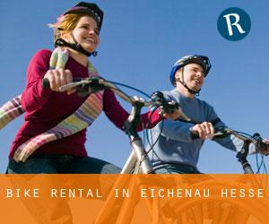 Bike Rental in Eichenau (Hesse)
